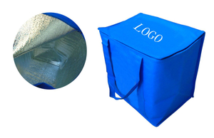 Customized Non Woven Cooler Bag